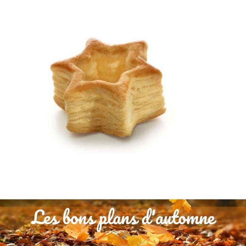 Bon plan d'automne Etoile feuilletée 8,5 cm-16